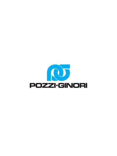 Cover - Pozzi ginori