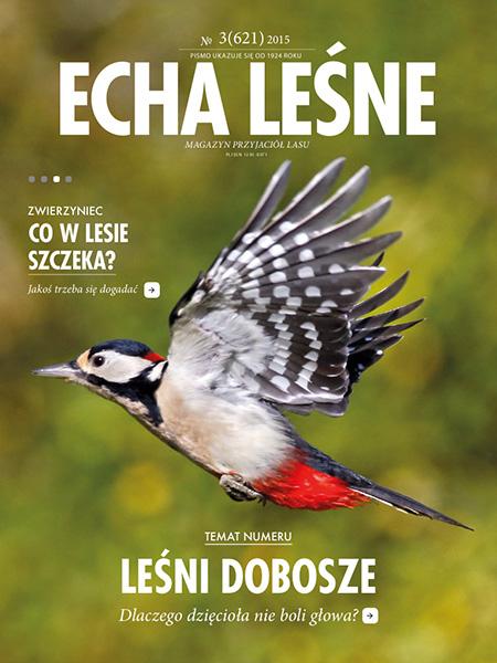 Cover - Echa Leśne